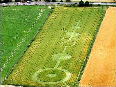 Norfolk Bio-field, July 5, 2006