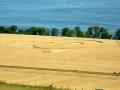 Wester Flisk Farm, Fife, Scotland, August 5, 2006